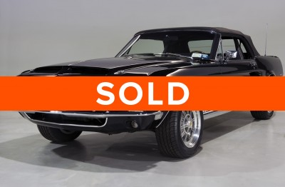 shelby - SOLD